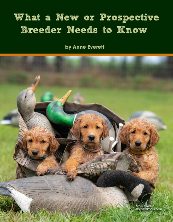 What a New or Prospective Breeder Need to Know