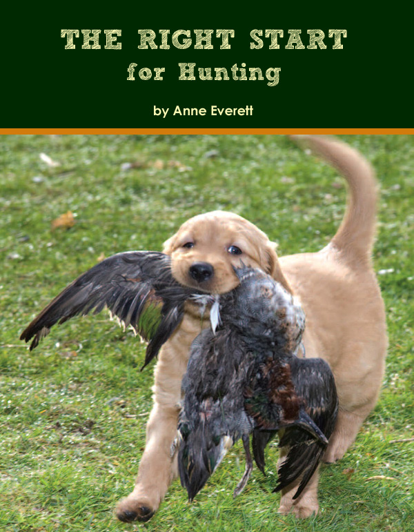 The Right Start for Hunting