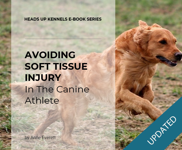Avoiding Soft Tissue Injury in the Canine Athlete